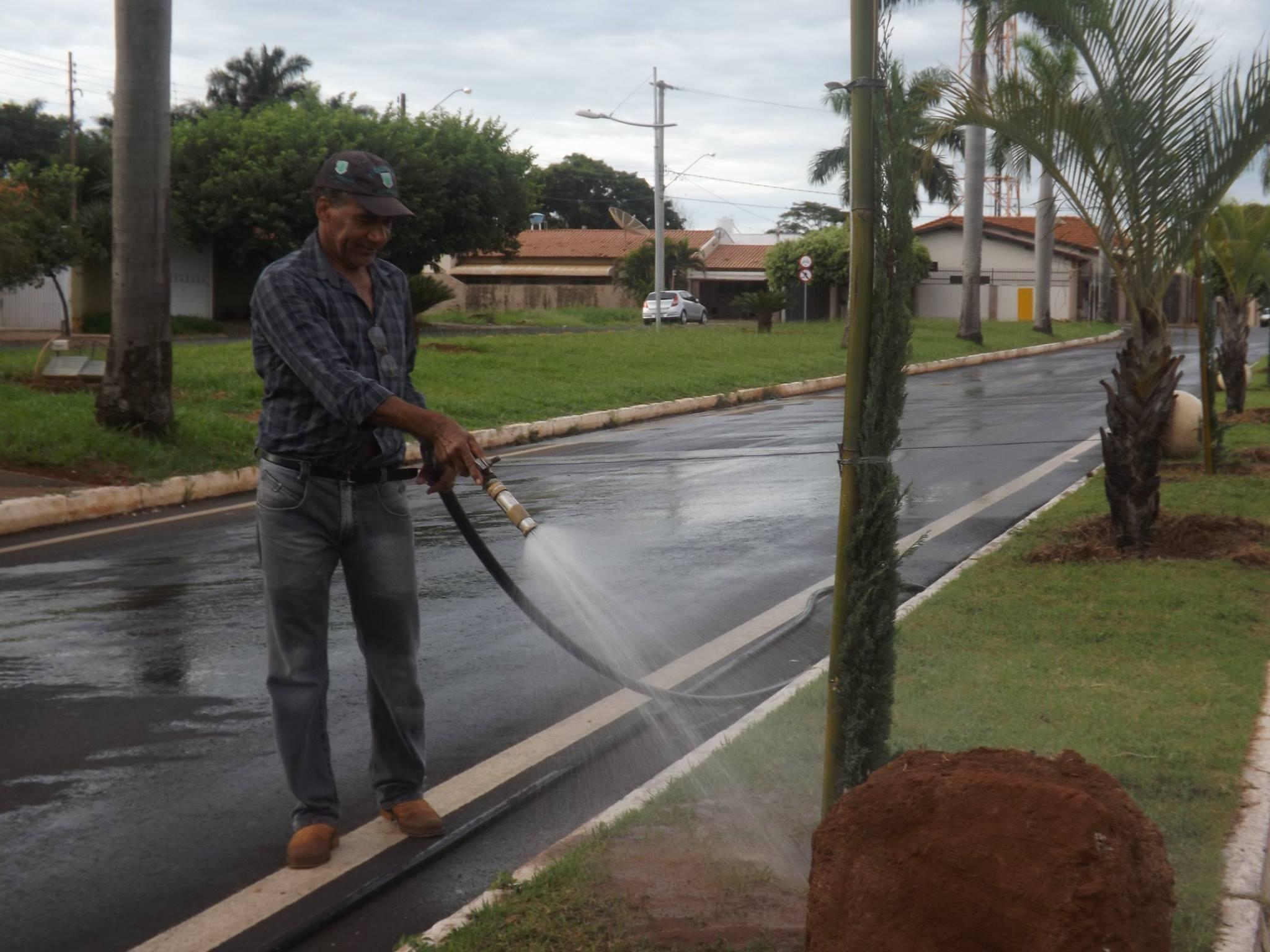 Trabalho voluntário de jardinagem